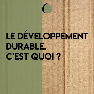 Le développement durable, c'est quoi?-Simples Conférences