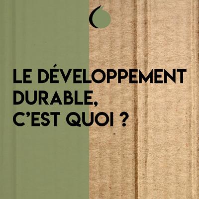 Le développement durable, c'est quoi ?